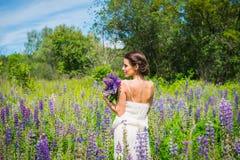Junge Frau, glücklich, Stellung unter dem Feld von violetten Lupines, lächelnd, purpurrote Blumen Blauer Himmel auf dem Hintergru Lizenzfreies Stockbild