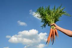 Junge Frau hält eine Karotte herein gegen einen blauen Himmel Lizenzfreie Stockfotos