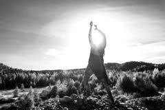 Junge Frau hebt die Sonne auf stockbild