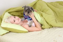 Junge Frau im Bett, das mit Schnauzerhund spielt Stockbild