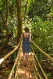 Junge Frau im Dschungel auf der Brücke in tropischem Gewürz planta Stockbilder