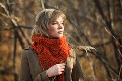 Junge Frau im Herbstwald Stockfotografie