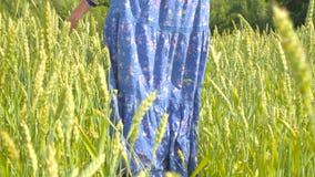 Junge Frau im Retro- Kleid gehend durch Grün stock footage