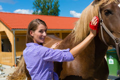Junge Frau im Stall mit Pferd Stockfotografie