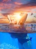 Junge Frau im Swimmingpool stockfoto