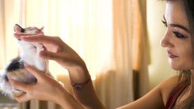 Junge Frau im Wohnzimmer, das mit ihrem wenig Rot mit schwarzem Kätzchen spielt stock video