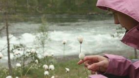 Junge Frau lächelt mit der Blume stock video footage