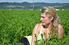 Junge Frau liegt auf grünem Feld im Sonnenschein Lizenzfreies Stockfoto