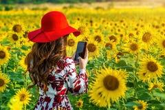 Junge Frau machen ein Foto auf einem Gebiet von Sonnenblumen lizenzfreie stockbilder