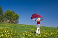 Junge Frau mit einem roten Schal auf einer Wiese Lizenzfreie Stockfotos