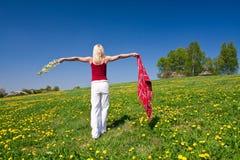 Junge Frau mit einem roten Schal auf einer Wiese Lizenzfreies Stockfoto