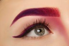 Junge Frau mit gefärbter Augenbraue, lizenzfreie stockfotos