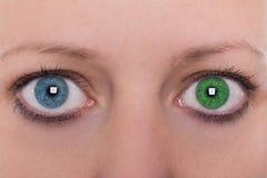 Junge Frau mit Heterochromia iridum, unterschiedliche Farbe des Auges zwei Stockfotografie