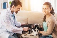 Junge Frau mit ihrem Hundschlittenhund auf einem Besuch zum Tierarzt stockfotografie