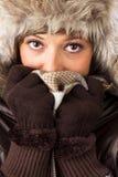 Junge Frau mit Pelzhut, -handschuhen und -schal Stockfotos