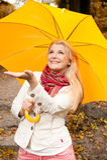 Junge Frau mit Regenschirm in einem Herbstwald Stockfotografie