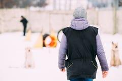 Junge Frau nimmt an Hundetraining teil Hundespielen im Freien im Schnee Lizenzfreies Stockfoto
