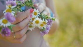 Junge Frau sammelt einen Kranz von Gänseblümchen in der Wiese von Blumen, Abschluss oben stock video footage