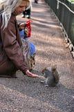 Junge Frau u. scherender Snack des Eichhörnchens Lizenzfreie Stockfotografie