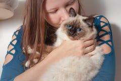 Junge Frau umarmt ihre Birman-Katze Stockfoto