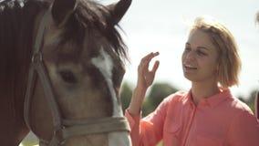 Junge Frau und Freund, die ein Pferd streichelt stock footage