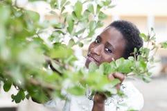 Junge Frau versteckt hinter dem Laub stockbild