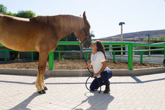 Junge Frau, welche die Nase ihres Pferds küsst Stockfoto
