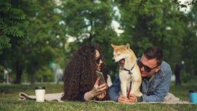 Junge Frau zeigt ihrem Freund lustige Bilder auf Smartphone, bei der Entspannung im Park mit Schoßhund, Leute sind stock video