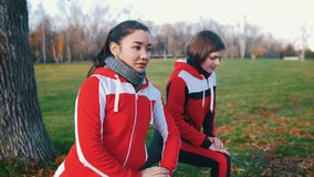 Junge Frau zwei in den Sportkostümen, die oben Beinlaufleinen im Parkabschluß tun stock video