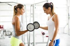 Junge Frauen, die anhebende Gewichte in der Turnhalle ausüben stockbild