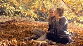 Junge Frauen, die mit Freund am Park sich entspannen stock video