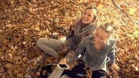 Junge Frauen, die mit Freund am Park sich entspannen stock footage