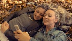 Junge Frauen, die mit Freund am Park sich entspannen stock video footage