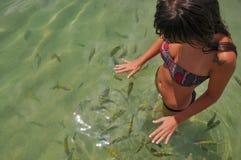 Junge Frauen, die mit tropischen Fischen schwimmen Bahia, Boipeba Brasilien stockfotografie