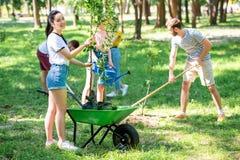 junge Freunde, die neue Bäume und das Freiwillig erbieten pflanzen lizenzfreie stockfotografie