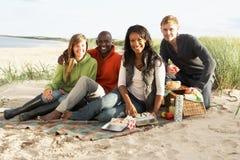 Junge Freunde, die Picknick auf Strand genießen Stockfotografie