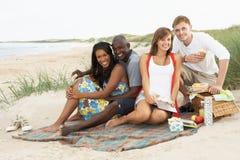 Junge Freunde, die Picknick auf Strand genießen Lizenzfreies Stockfoto