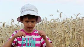 Junge gähnt auf einem Weizengebiet und betrachtet die Kamera, Junge, möchte schlafen stock video
