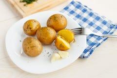 Junge gekochte Kartoffeln mit Dill Stockbilder