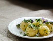 Junge gekochte Kartoffeln mit Dill Stockfotos