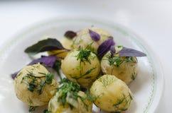 Junge gekochte Kartoffeln mit Dill Stockfoto