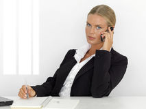 Junge Geschäftsfrau Lizenzfreies Stockfoto