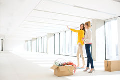 Junge Geschäftsfrau, die mit weiblichem Kollegen im neuen Büro sich bespricht Stockbild