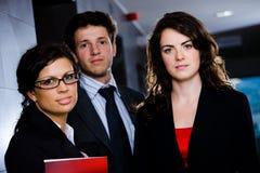 Junge Geschäftsleute Stockfotos