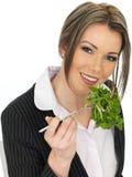 Junge gesunde Geschäftsfrau, die einen frischen grünen Blatt-Salat isst Stockfotografie