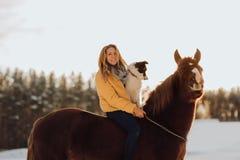 Junge glückliche nette lächelnde Frau mit ihrem Hund border collie sitzen auf Pferd auf dem Schneegebiet auf Sonnenuntergang yrll stockfoto