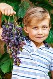 Junge hält eine Weintraube Stockbilder