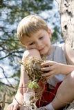 Junge hält Vogelnest stockbilder