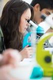 Junge hübsche Studentin, die durch Mikroskop blickt lizenzfreie stockfotos