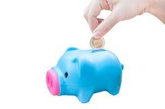 Junge Hand der Frauen, die Geldmünze in Einsparungsschwein, Finanzthema setzt Lizenzfreie Stockfotos